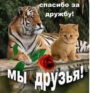 http://s9.uploads.ru/t/nPZwy.jpg