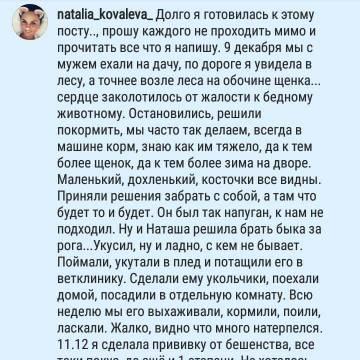 http://s9.uploads.ru/t/oUF9J.jpg