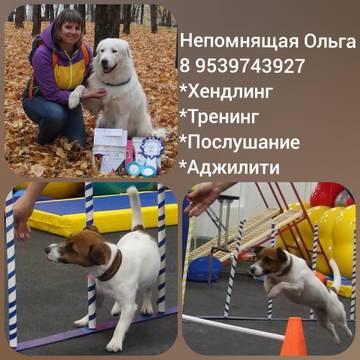 http://s9.uploads.ru/t/s2OhW.jpg
