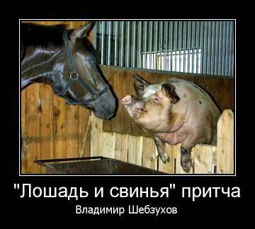 http://s9.uploads.ru/t/uI3rX.jpg