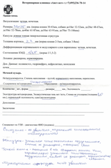 http://s9.uploads.ru/t/vzF34.png