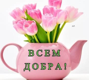 http://s9.uploads.ru/t/wRQpG.jpg