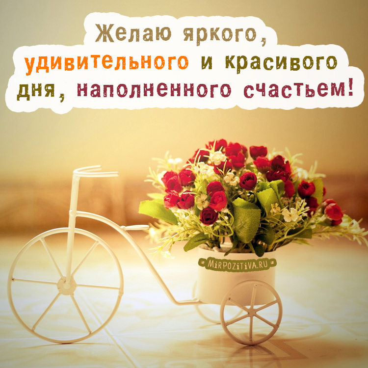 http://s9.uploads.ru/t7E3G.jpg