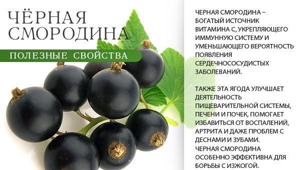 http://s9.uploads.ru/wE2zS.jpg