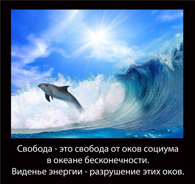 http://s9.uploads.ru/wnsIp.jpg